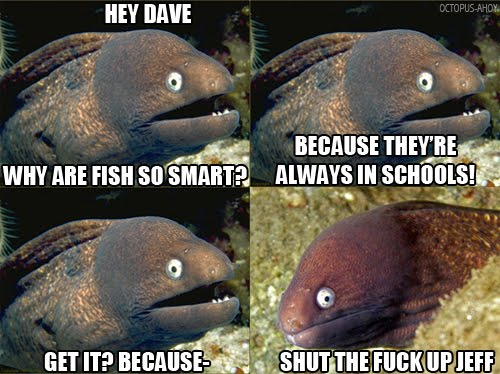 Bad Joke Eel - Why Are Fish So Smart