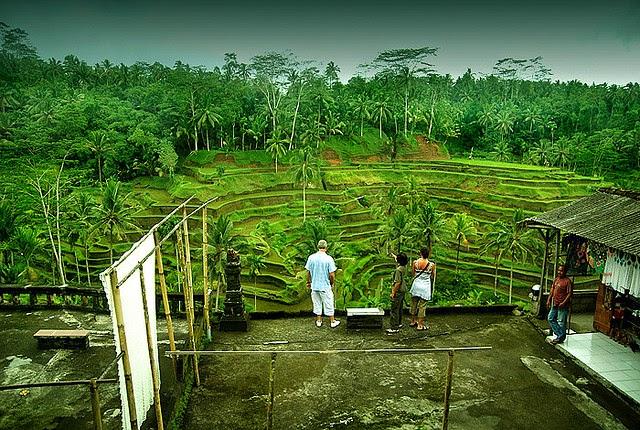 wisata indonesia ubud