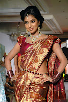 Bollywood and Tollywood acress Amala, Paul,traditional saree, fashion show, hot, sexy