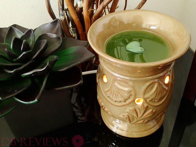 Owlchemy Wax Melt Warmer - Review and Giveaway