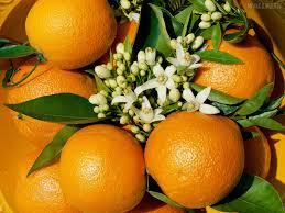 Beneficios da laranja