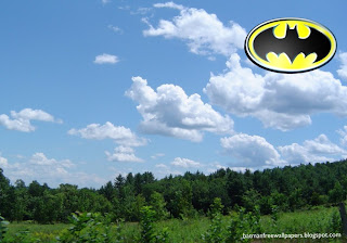 Wallpapers of Batman Dark Knight Logo in Tropical Forest Sky Desktop Wallpaper