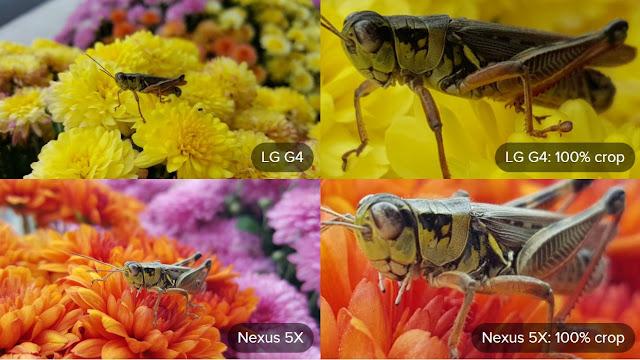 LG G4 Camera Vs Nexus 5X Camera Macro