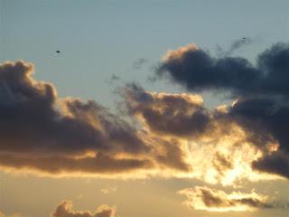 nuvole e gabbiani