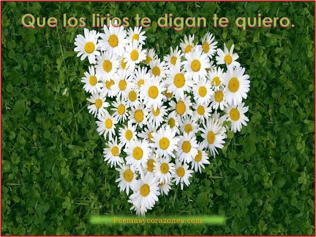 corazones-te-quiero_155