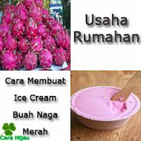 Usaha Rumahan, Cara Membuat Ice Cream Buah Naga Merah