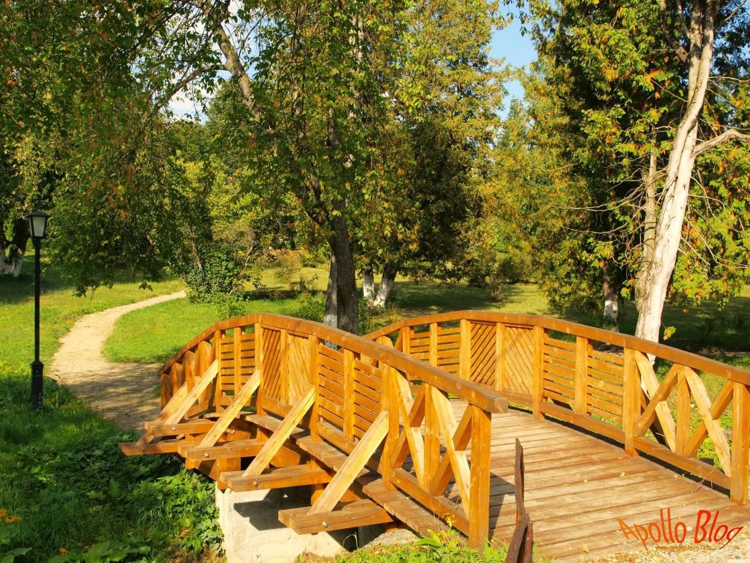 Podet lemn parc