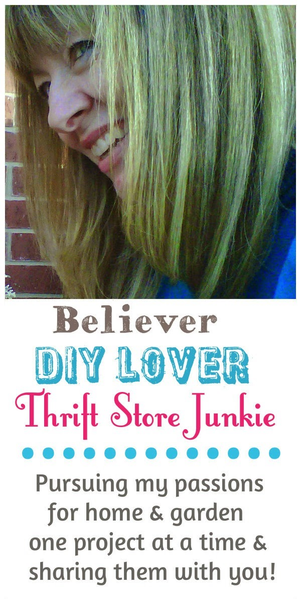 Cecilia / profile / believer DIY lover thrift store junkie / mythriftstoreaddiction.blogspot.co