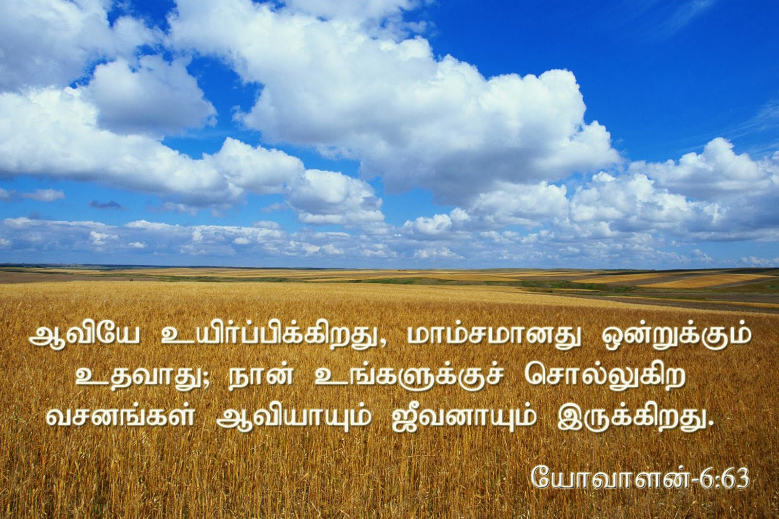 Tamil Christian Bible Study - The Book Of Hebrews | Pas. A ...