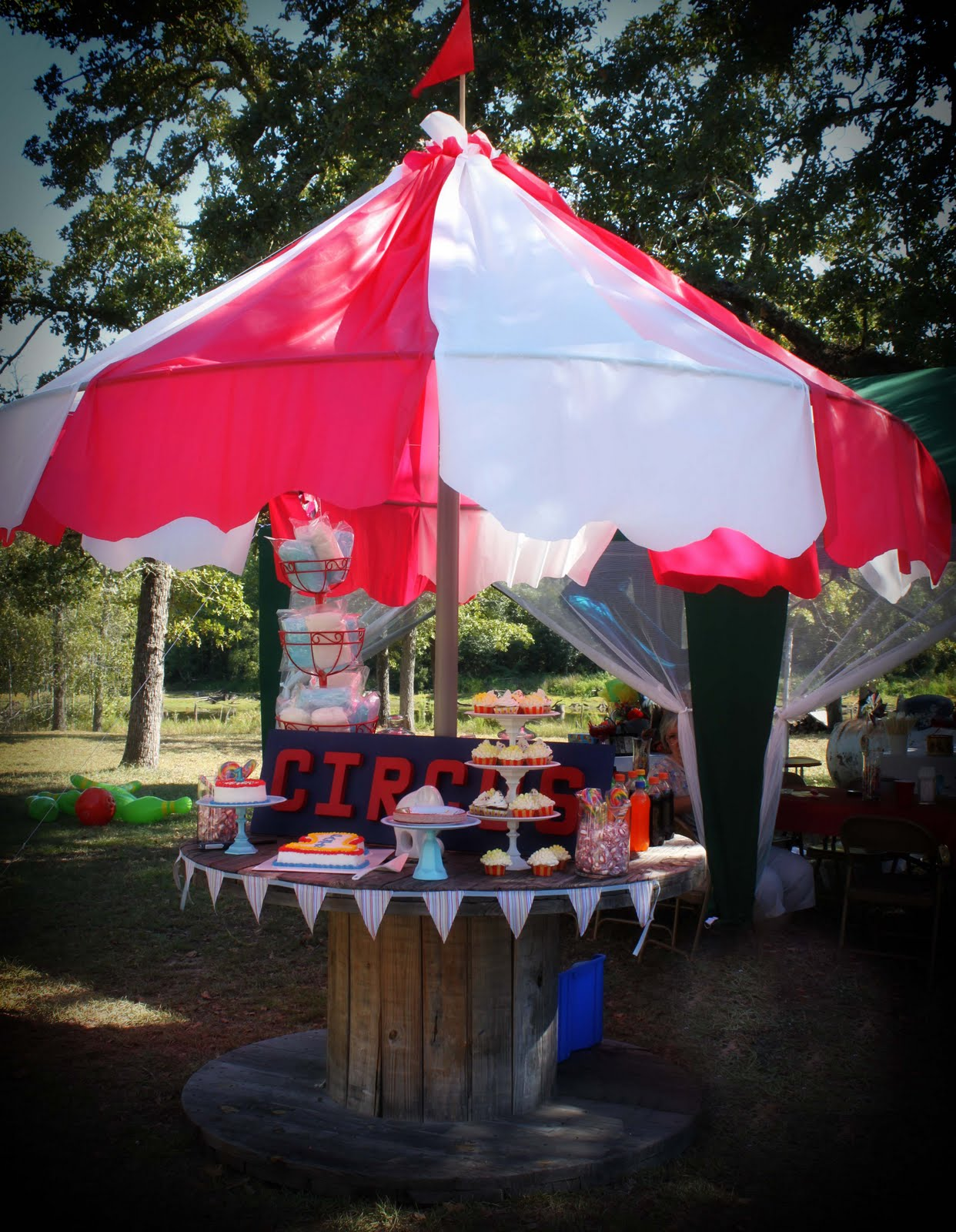 Diy carnival party big top tent southern revivals for How to create a canopy