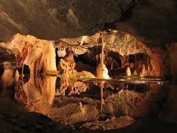 kehidupan bawah tanah
