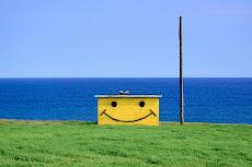 Aloha Smiley