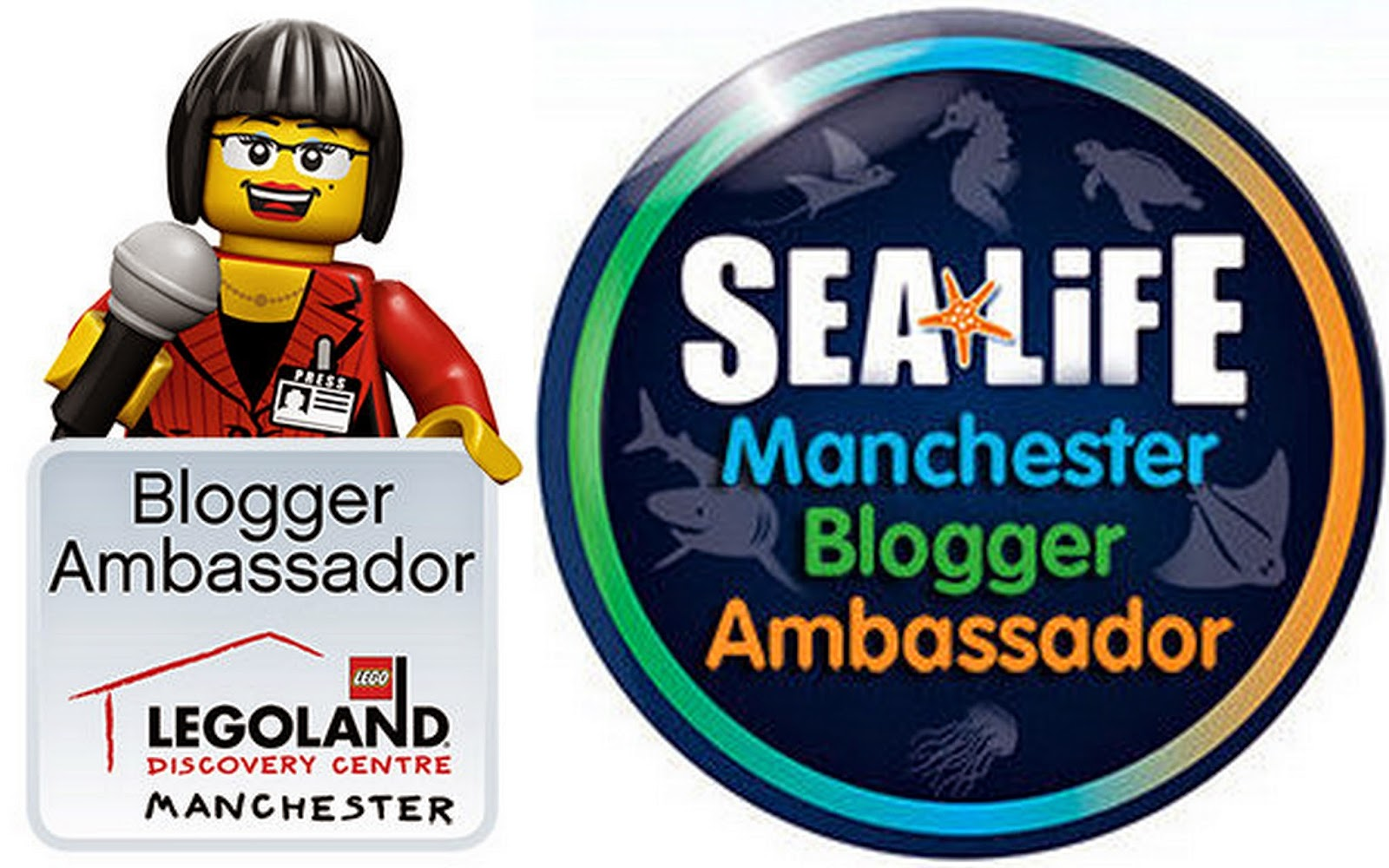 The Brick Castle are Ambassadors for LEGOLAND Discovery Centre and SeaLife, Manchester