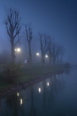 Predawn Fog, Breisach, Germany