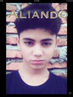 Profil Biodata Aliando (Ali Syarief)