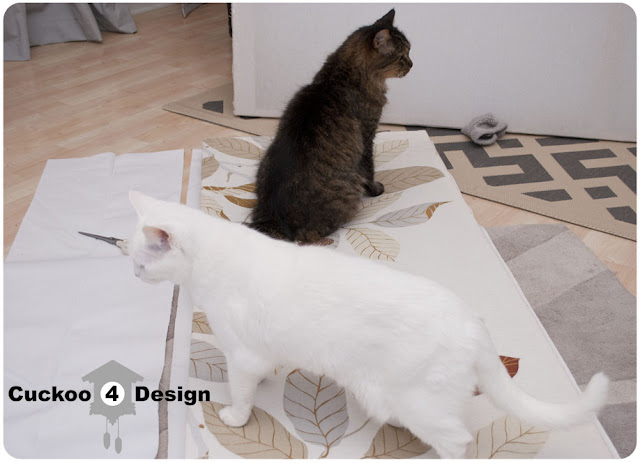 cats helping with room divider project