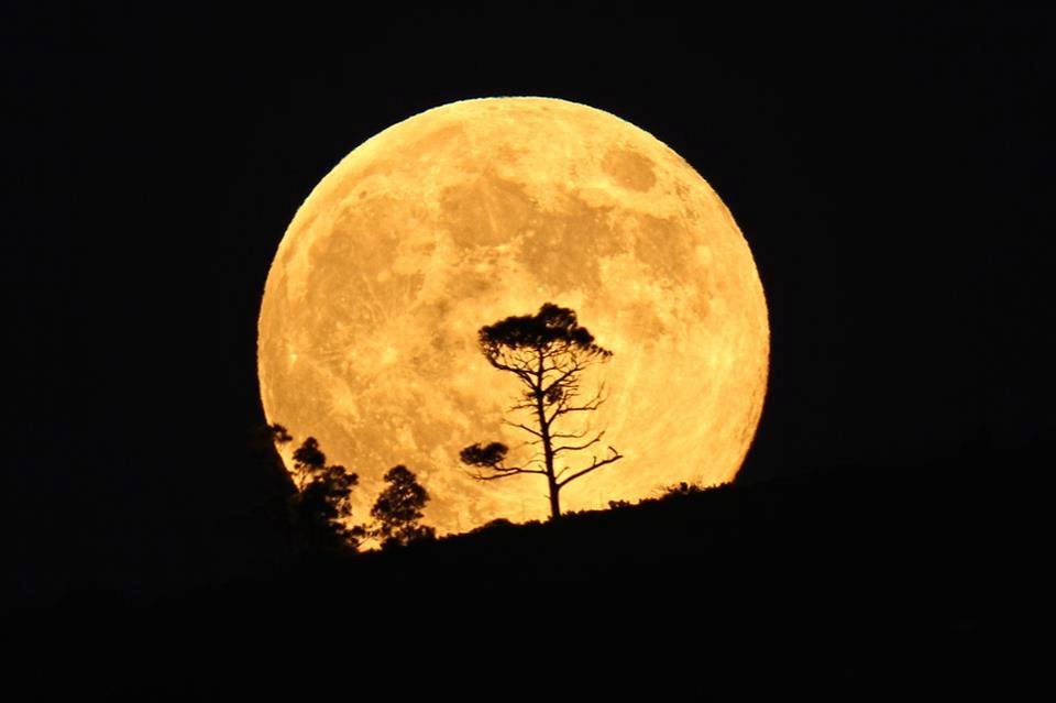 Crecer en la luz for En q luna estamos hoy