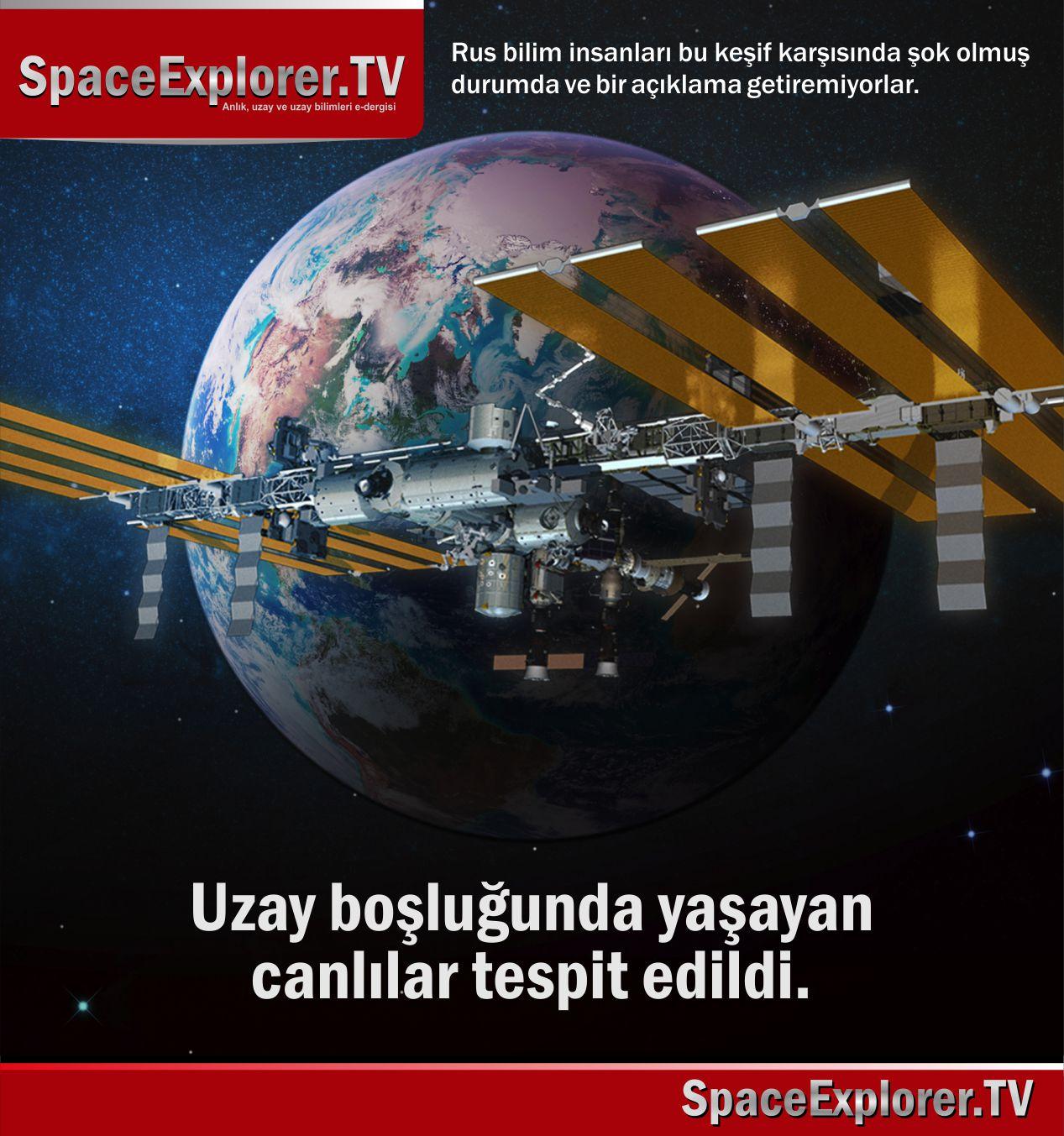 ISS, Uluslar Arası Uzay İstasyonu, Rusya, Rusya uzay araştırmaları, Tardigrade, Su ayısı, Space Explorer, Uzayda yaşayan canlılar, Uzayda hayat var mı?,