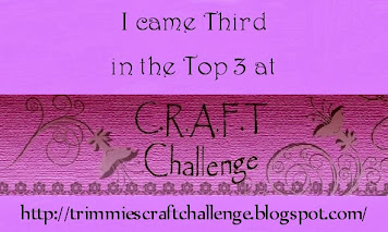 5 x C.R.A.F.T. Challenge Top 3