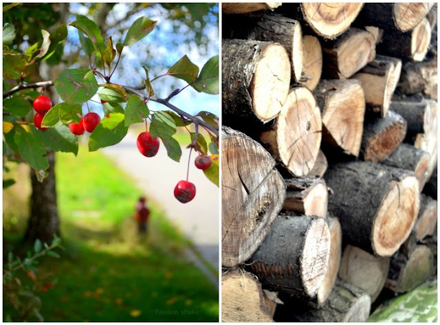 september, cherry, wood, autumn