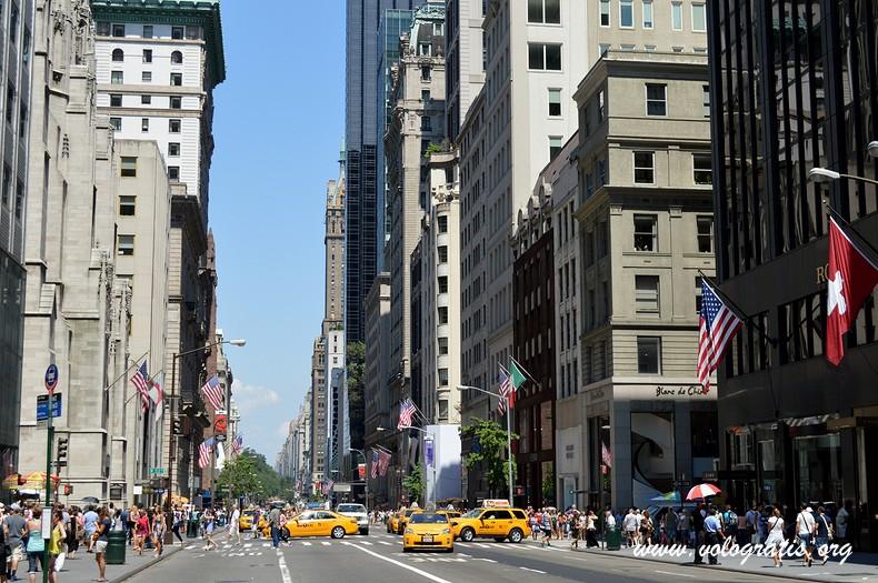 fifth avenue da non perdere a new york
