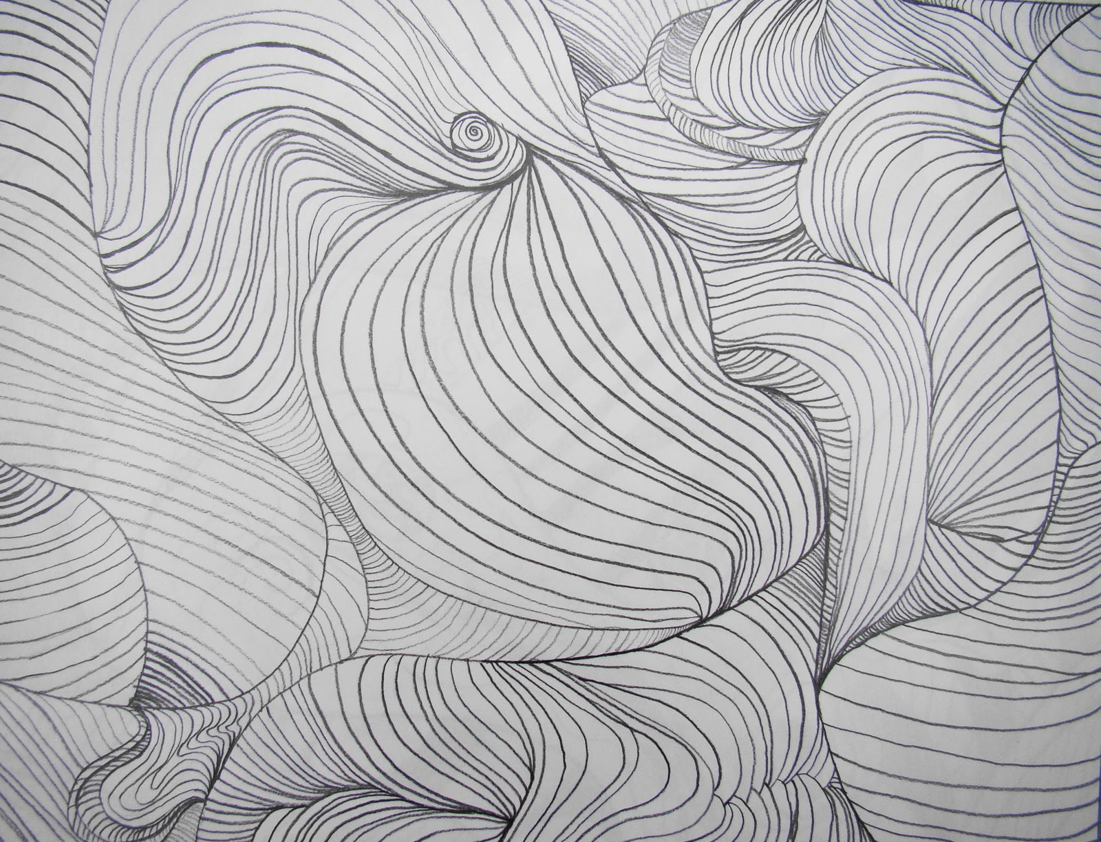 Line Movement Art : Line movement art imgkid the image kid has it