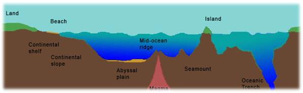 Morfologi Dan Relief Dasar Laut Belajar Geografi
