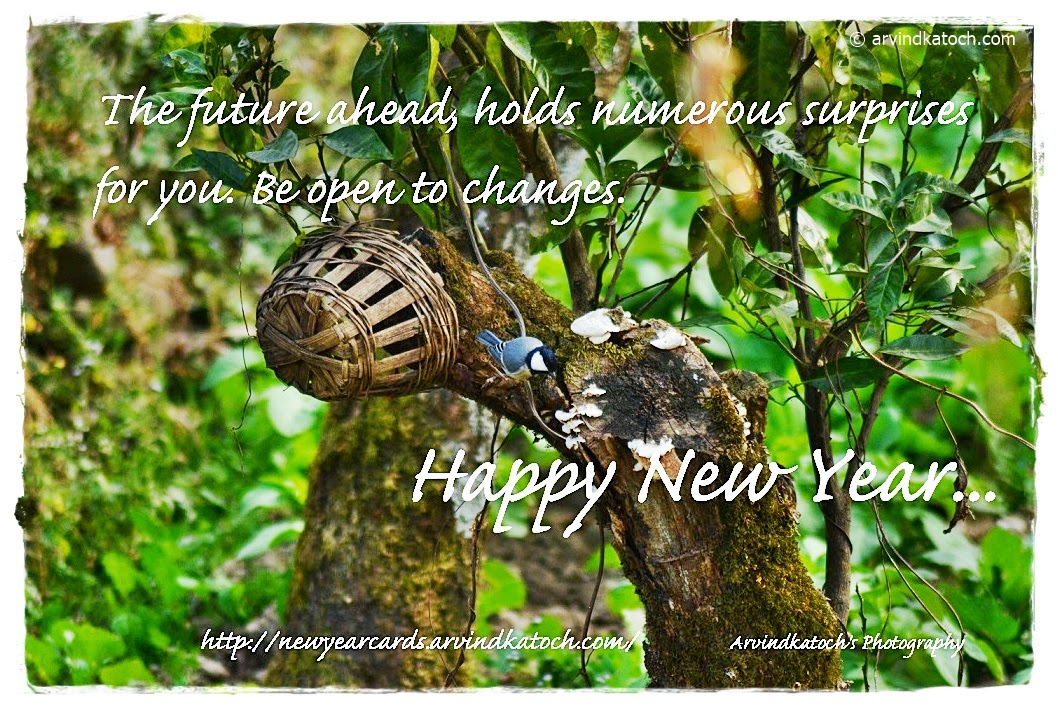 Future, ahead, surprises, open, changes, Happy New Year, New Year Cards