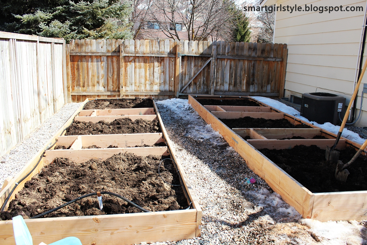 smartgirlstyle Box Vegetable Garden The Early Stages