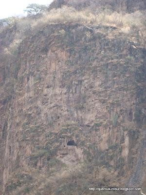 Cueva en el cañón de Matatlán