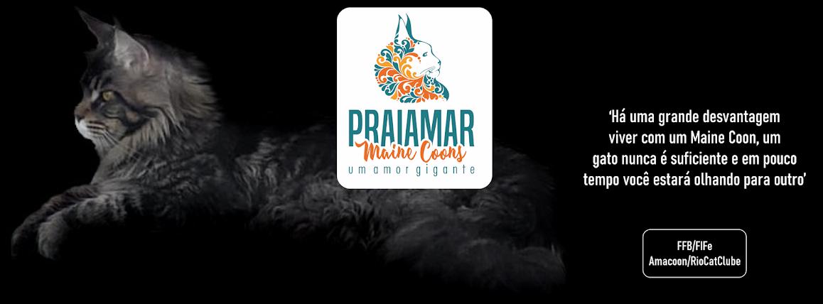 Praiamar  Maine Coons