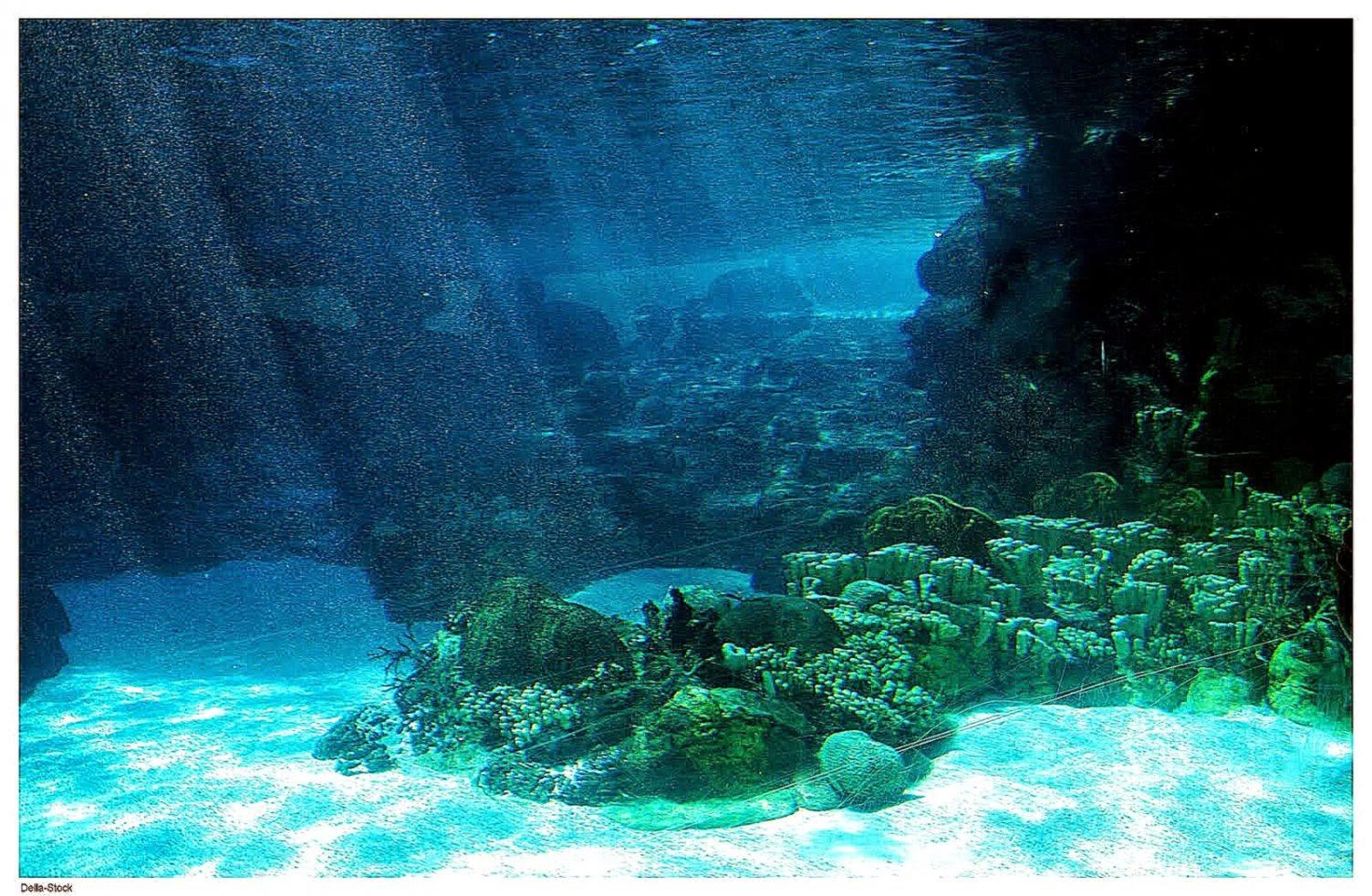 Beautiful Paradise Ocean Waves Wallpaper Hd