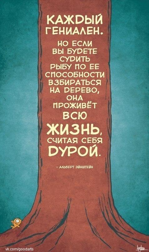 """Саморазвитие. Юмор. """"Каждый гениален. Но если вы будете судить рыбу по ее способности взбираться на дерево, она проживет всю жизнь считая себя дурой!"""" Альберт Эйнштейн."""