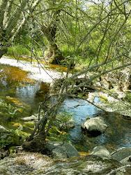 Arroyo de La Calera