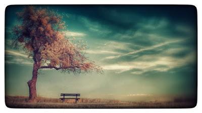 Les étapes du deuil sont incontournables. Chacun y passe plus ou moins rapidement. Le deuil peut durer un à deux ans, mais parfois de nombreuses années. Tout dépend des circonstances, de notre histoire à chacun, de notre capacité à réagir... Le processus du deuil passe donc par plusieurs étapes.