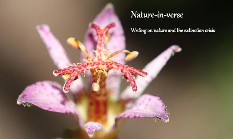 Nature-in-verse