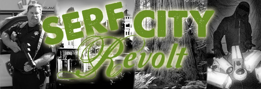Surf City Revolt!