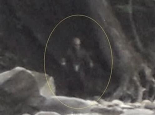 [Imagem: alien-Parc-Chauveau233-Feb.-20-16.57-300x223.jpg]