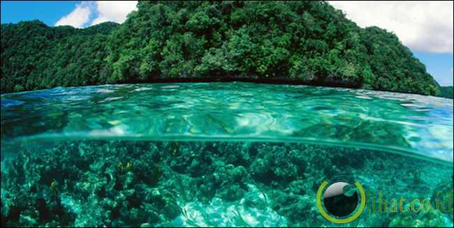 Palau, yaitu sebuah negara kepualauan di Samudra pasifik