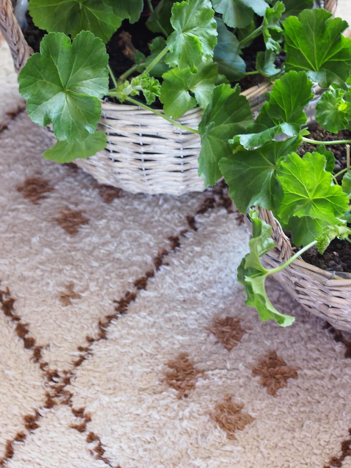 berber ryijymatto beni ouarain moroccan