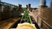 The Cheetah Hunt