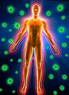 Иммунитет при гнойно-воспалительных процессах