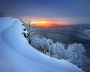 красивые фотографии зимы