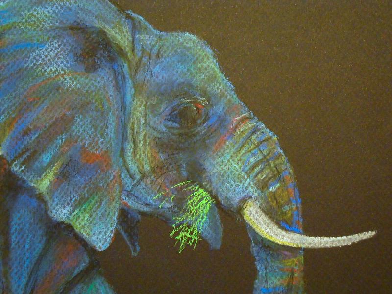 An Elephant A Day Elephant No 318 Soft Pastels