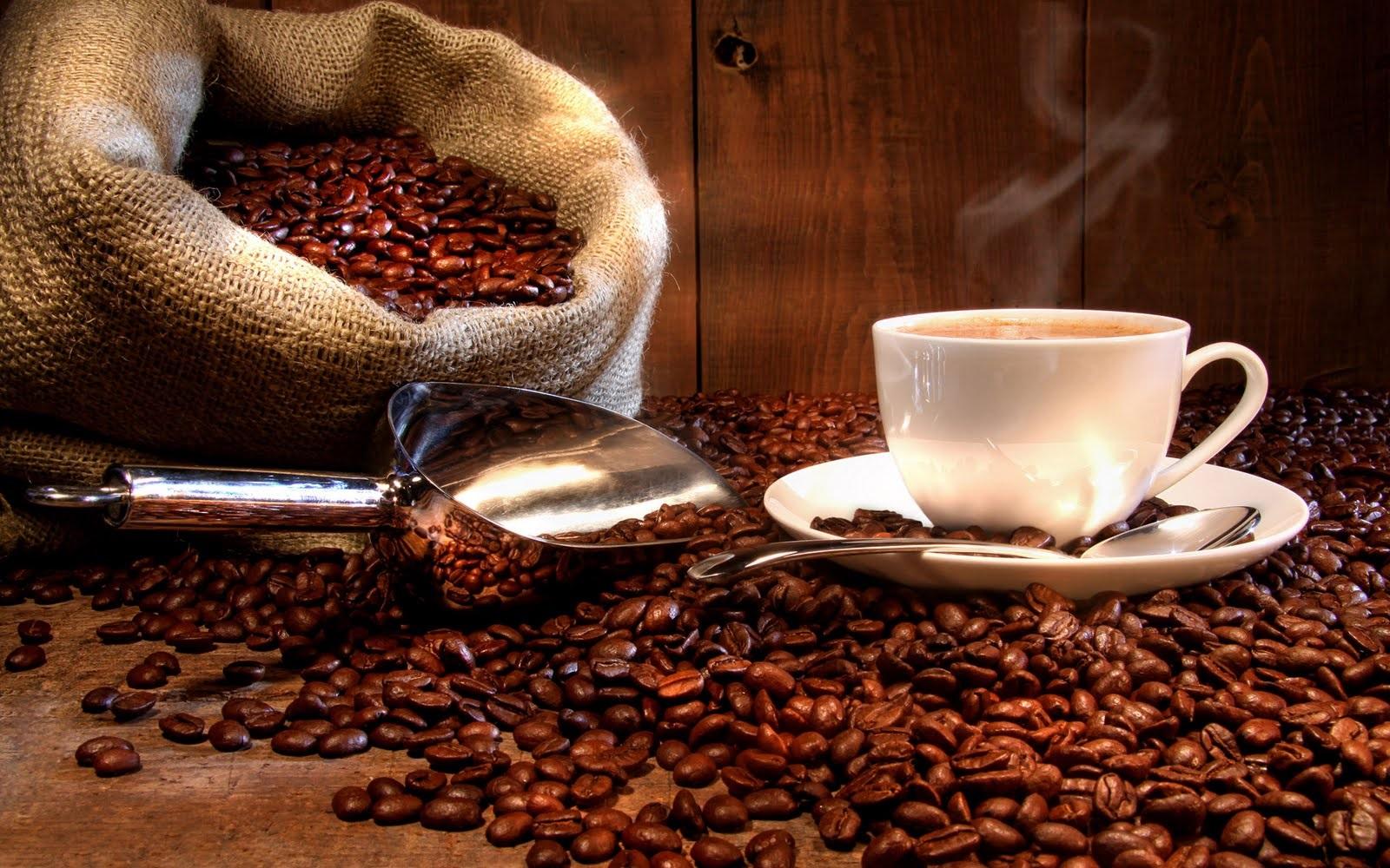 Cafeína x Cortisol