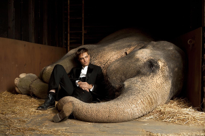 http://1.bp.blogspot.com/-duZXDiZoXTY/TbfmZmStgkI/AAAAAAAAJaU/janHrgESCVY/s1600/water+for+elephants2.jpg