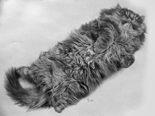 23-Hyper-realistic-Cats-Pencil-Drawings-Hong-Kong-Artist-Paul-Lung-aka-paullung-www-designstack-co