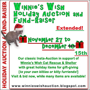 Holiday Insta-Auction!!