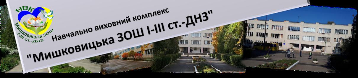 """НВК """"Мишковицька ЗОШ І-ІІІ ст.-ДНЗ"""""""