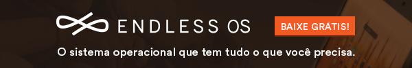 Baixe o Endless OS